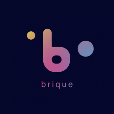 Brique. The Money in the future