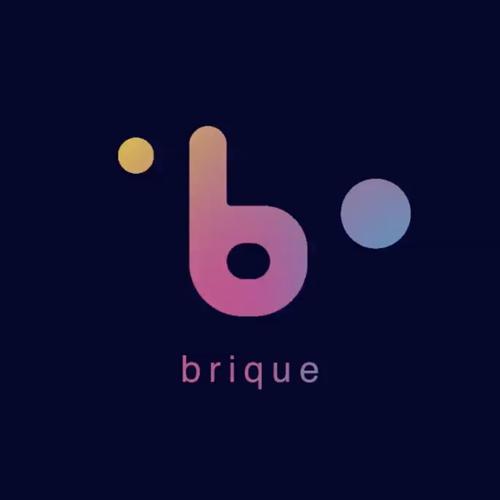 Brique. The Money in the future